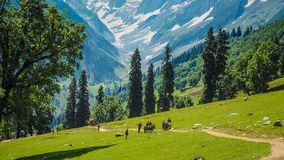 Beautiful mountain landscape of Sonamarg, Jammu and Kashmir state,. India Royalty Free Stock Image