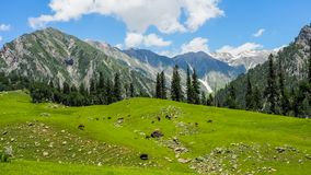 Beautiful mountain landscape of Sonamarg, Jammu and Kashmir state,. India stock image