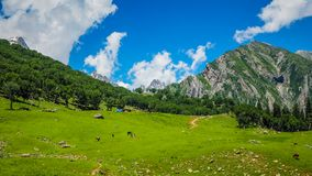 Beautiful mountain landscape of Sonamarg, Jammu and Kashmir state,. India Stock Image