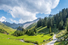 Beautiful Mountain Landscape in the Summer in the Alps, Switzerl Stock Photo