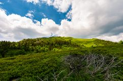 Beautiful mountain landscape in summertime. Dramatic scenery before the storm royalty free stock photography