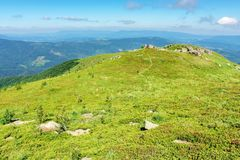 Beautiful mountain landscape in summertime. Green grassy hills with bunch of rocks in the distance. path through the meadow. sunny weather with fluffy clouds royalty free stock images