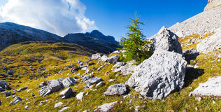 Beautiful mountain landscape. There are big stones in the foreground. Ridge goes over the horizon. There is a forest at the foot of the mountains. The sky is Royalty Free Stock Images
