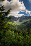 A beautiful mountain landscape with trees. Tatry, Slovakia stock image