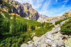 Beautiful valley in High tatras, Slovakia Royalty Free Stock Photos