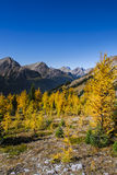 Beautiful mountain landscapes in Autumn Stock Images