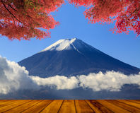 Beautiful mountain with nice maple and flower Royalty Free Stock Photography