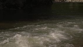 A beautiful mountain river. Good weather, cold water, the river is on Zakarpattya very high in the mountains. In the river there is a fish called trout. Clean stock footage