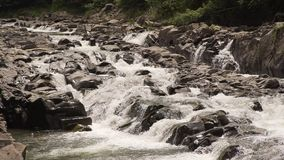 A beautiful mountain river. Good weather, cold water, the river is on Zakarpattya very high in the mountains. In the river there is a fish called trout. Clean stock video