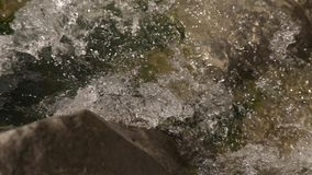 A beautiful mountain river. Good weather, cold water, the river is on Zakarpattya very high in the mountains. In the river there is a fish called trout. Clean stock video footage