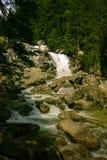 A beautiful mountain river landscape in Tatry. Slovakia royalty free stock photo