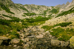 A beautiful mountain river landscape in Tatry. Slovakia royalty free stock photos