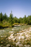 A beautiful mountain river landscape in Tatry. Slovakia stock photos
