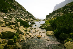 A beautiful mountain river landscape in Tatry. Slovakia stock images