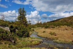 Beautiful mountain  river Svydovets ridge. Ukraine Royalty Free Stock Images