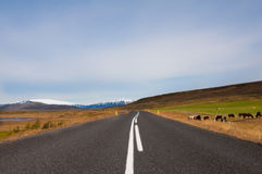 Beautiful mountain road in Iceland, with glaciers on the horizon Stock Photo