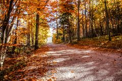 Mountain road in the Slovak paradise national park, on a Beautiful Autumn clear day. Changing Season concept. Beautiful mountain road in the Slovak paradise royalty free stock photos