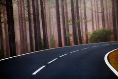 Beautiful mountain road in Tenerife. Road travel concept. Car travel adventure.  Stock Photo