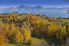 Beautiful mountain scenery and autumn foliage Royalty Free Stock Image