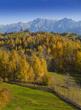Beautiful mountain scenery and autumn foliage Royalty Free Stock Photos