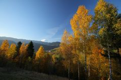 Beautiful mountain scenery and autumn foliage Royalty Free Stock Photography