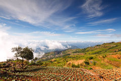 Beautiful mountain scenery in Phutabberk Phetchabun, Thailand Stock Image