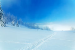Beautiful mountain snowy landscape and snow covered trees and snowy paths in the snow. Beautiful sunny day in the Royalty Free Stock Photos