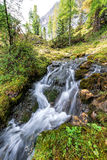 Beautiful mountain stream in the Dolomites stock images