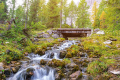 Beautiful mountain stream in the Dolomites royalty free stock images