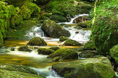 Beautiful Mountain Stream With Moss Covered Stones. Landscape in forest Royalty Free Stock Images