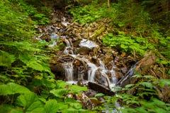 Beautiful mountain stream on  mountains Royalty Free Stock Image