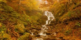Beautiful mountain stream Stock Photos