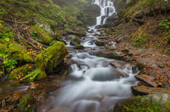 Beautiful mountain stream Stock Images