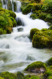 Beautiful mountain stream stock images