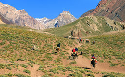 Beautiful mountain valley in Argentina. Hikers trekking in a beautiful mountain valley near Aconcagua in Aconcagua National Park, Argentina, South America royalty free stock photography