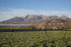 Beautiful mountain valley hay field with irrigation sprinkler Royalty Free Stock Photo
