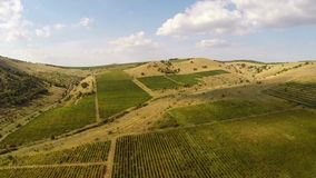 Beautiful mountain valley with vineyards, aerial view stock footage