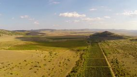 Beautiful mountain valley with vineyards, aerial view.  stock video footage