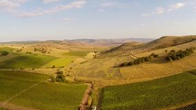 Beautiful mountain valley with vineyards, aerial view stock video footage