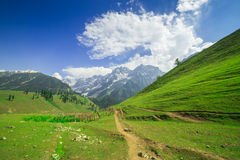 Beautiful mountain view with snow of Sonamarg, Jammu and Kashmir state Royalty Free Stock Photography