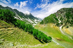 Beautiful mountain view with snow of Sonamarg, Jammu and Kashmir state. India royalty free stock photos