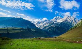 Beautiful mountain view of Sonamarg, Jammu and Kashmir state, India. A Beautiful mountain view of Sonamarg mountain, Jammu and Kashmir state, India stock images