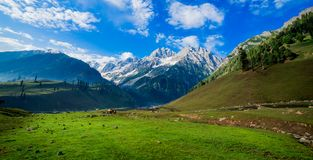Beautiful mountain view of Sonamarg, Jammu and Kashmir state, India. A Beautiful mountain view of Sonamarg mountain, Jammu and Kashmir state, India royalty free stock photo