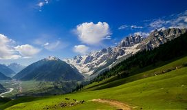 Beautiful mountain view of Sonamarg, Jammu and Kashmir state, India. A Beautiful mountain view of Sonamarg mountain, Jammu and Kashmir state, India royalty free stock images