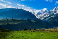 Beautiful mountain view of Sonamarg, Jammu and Kashmir state, India. A Beautiful mountain view of Sonamarg mountain, Jammu and Kashmir state, India stock photos