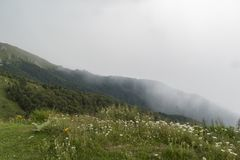 Beautiful mountain view with upcoming storm from the hills on the path to the Eho hut. The Troyan Balkan is exceptionally. Picturesque and offers a combination royalty free stock photos
