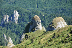 Beautiful mountain vista in the Carpathians Stock Image
