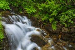 Beautiful mountain waterfall Royalty Free Stock Images