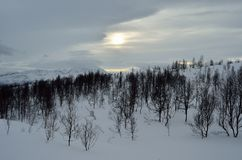 Beautiful mountain winter landscape in the arctic circle wilderness with small mountain birch trees and sunshine behind dense clou Royalty Free Stock Photo
