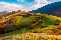 Beautiful mountainous countryside in autumn. Vivid fall colors at sunrise under the gorgeous sky. dreamy landscape of Carpathian mountains stock photo